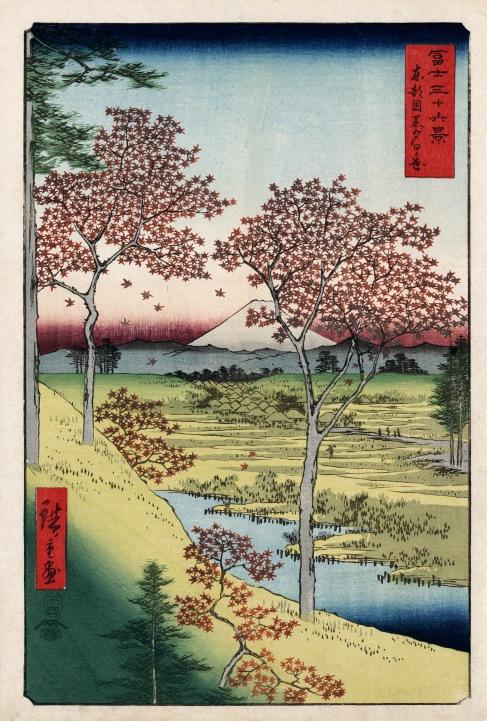 Sunset Hill Meguro