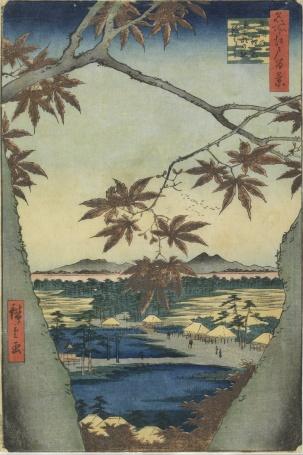 The Maple Leaves of Mama Tekona Shrine and Tsugi Bridge
