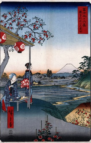 The Teahouse with the View of Mt. Fuji