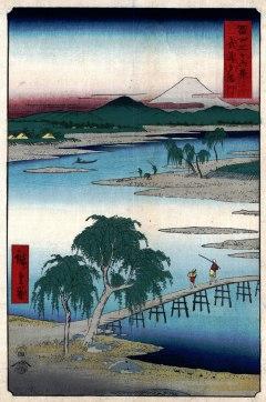 The Tama River