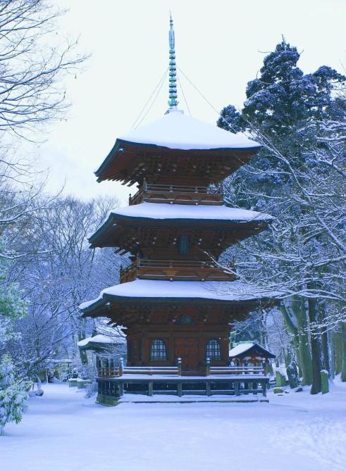 Winter Pagoda